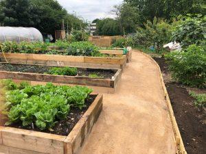 Sufra Community Gardens